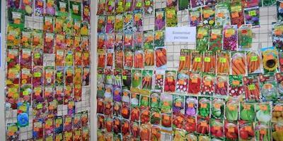 При покупке семян чем правильно руководствоваться: головой, сердцем или глазами?