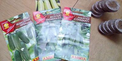 Отчет о получении посылки с семенами от Аэлиты