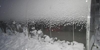 Зимняя сказка в огороде
