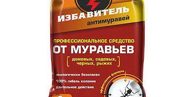 Лист уведомлений в Seedspost.ru
