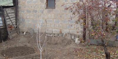 Посоветуйте, как облагородить участок возле соседской постройки?