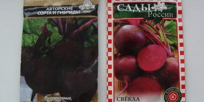 Поиск, Гавриш, СеДеК и другие: рассказ о том, как тестировались семена корнеплодов
