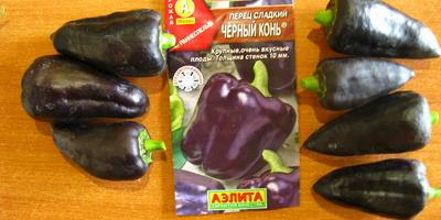 Чёрный конь от Аэлиты - черный, но не конь