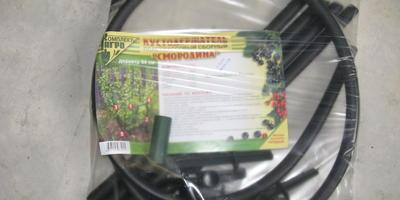 Пара секретов, как поддержать урожай ягодных кустарников в жаркой местности