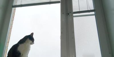 Окно сохраняет Тепло