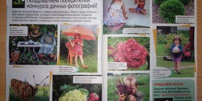 Победители летнего фотоконкурса, вы уже видели ваши фото в журнале?