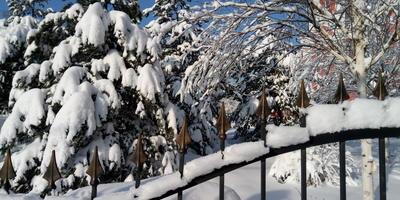 Вот зима, кругом бело, много снега намело...