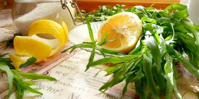 Дачный Тархун — нереально вкусный и полезный!