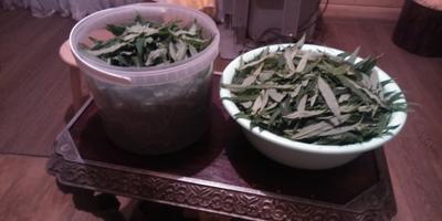 «Копорский чай» своими руками