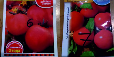 """Как работает """"закон подлости"""" (на примере томатов)"""