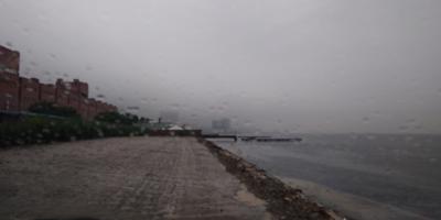Мои потери после циклонов. :(