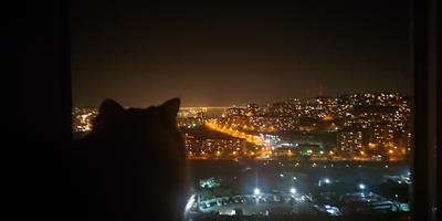Посмотри в моё окно...