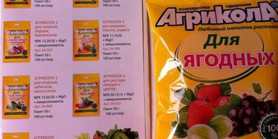 Агрикола для ягодных культур. Корневая подкормка кустов смородины, малины
