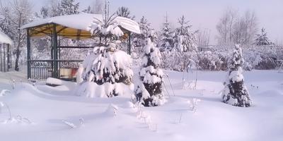 Зимушка-зима в гости к нам пришла
