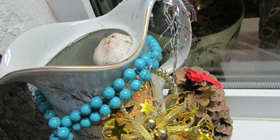 Крещенский чеснок