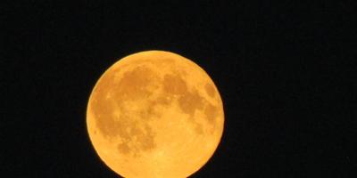 20 марта День Астролога - наш праздник!