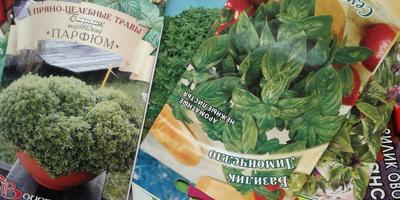Всего 5 шагов навстречу мечте с товарами от Seedspost.ru