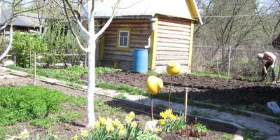 Если на даче нет бани - это не дача, а огород! Наша маленькая, да удаленькая!