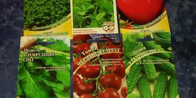"""Отчет о получении посылки с семенами для тестирования от фирмы """"Гавриш"""""""