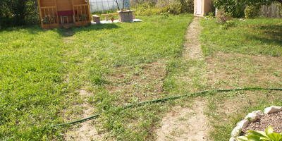 Благоустройство дачного участка и создание клумбы с хвойными растениями