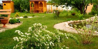Декоративный водоём, или Cамый лучший подарок для моего сада....