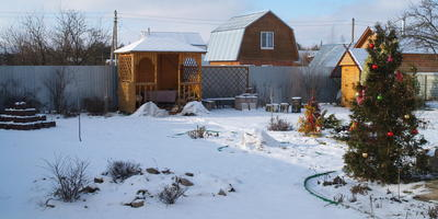 Как зима пришла к нам в конце января, или Зимняя сказка всё-таки наступила...