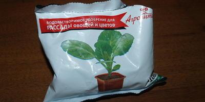 Петуния Татьяна F1. Этап 4. Развитие растений и уход за ними