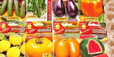 Гиппократ о тестировании семян, или Не пропадёт наш скромный труд