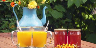 Облепиха - полезный осенний дар. Сохраняем витамины по максимуму