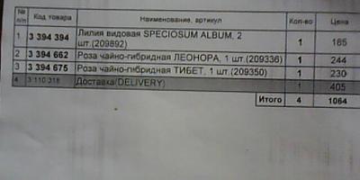 Посылка из Seedspost.ru. Рассматриваем и анализируем