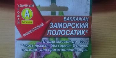 Баклажан Заморский полосатик. Тест на всхожесть. Часть 2