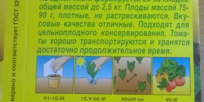 Томат Цитрусовый сад. Тест на всхожесть