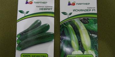 Тестирование № 2 интернет-магазина «7 семян»