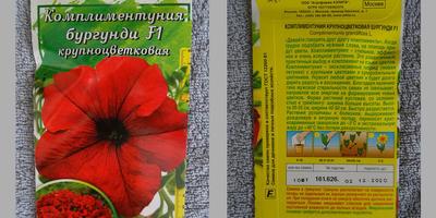 Отчет о прибытии тестовых петуний в Кукуевку