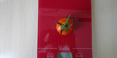 Лирика-2: первый томатик