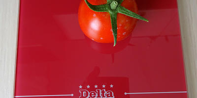Лирика-1, и томатик созрел один