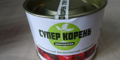 Секрет № 2: стоит ли использовать для томатов микоризообразующие препараты?