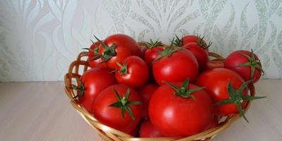 Секрет № 3: почему некоторые мои томаты вкуснее, чем у соседки