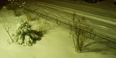 Капризы природы, или Как у нас проходит зима...
