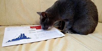 Заветный конверт из... Владивостока