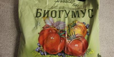 Тест-проверка на всхожесть томатов сорта Диковинка