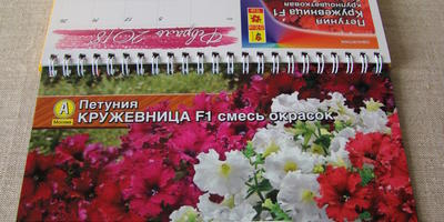 """Благодарность за участие в тестировании семян агрофирмы """"Аэлита"""""""