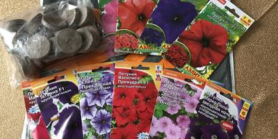 Получение посылки с семенами петуний