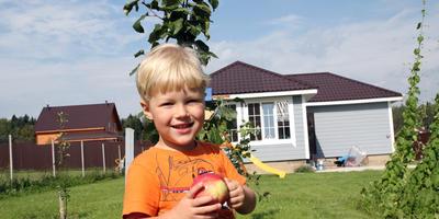 Записки новых дачников. 2016 г. Лето: посадки, постройки, первый урожай