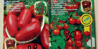 Домашнее задание №10: немного томатиков к ужину новых дачников