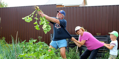 Посадила мама репку, или Как заманить ребенка в огород
