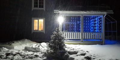 Записки новых дачников: уже четвертый Новый год на даче!