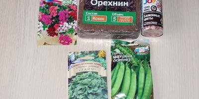 Приз за конкурс «В новый сезон 2019 — с Seedspost.ru!» прибыл