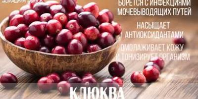 15 самых полезных продуктов для организма