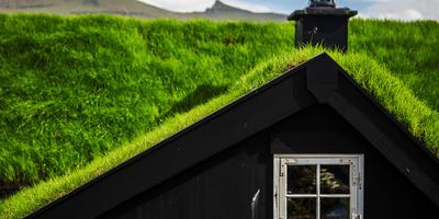 Зеленые крыши и их виды
